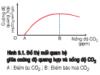 Bài 1, 2, 3, 4, 5, 6 trang 42 Sinh lớp 11 Nâng cao – Phân tích mối quan hệ giữa quang hợp và cường độ, thành phần quang phổ ánh sáng.