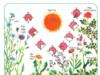 Bài 1, 2, 3, 4, 5 trang 99 Sách môn Sinh 11 Nâng cao – Nêu đặc điểm của ứng động sinh trưởng theo nhịp điệu đồng hồ sinh học.