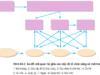 Bài 1, 2, 3, 4, 5 trang 270 SGK Sinh học 12 Nâng cao – Sự giống nhau trong phát triển phôi của các loài thuộc các nhóm phân loại khác nhau phản ánh