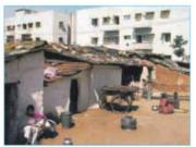 Bài 11. Di dân và sự bùng nổ đô thị ở đới nóng -Địa lí lớp 7: Nêu những tác động xấu tới môi trường do đô thị hoá tự phát ở đới nóng gây ra.