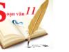 Soạn bài Luyện tập Thao tác lập luận bình luận Văn 11: Bình luận gì thêm về vai trò của pháp luật và việc giáo dục trong xã hội?