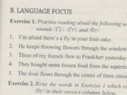 Language Focus – Unit 8 trang 59 SBT Tiếng Anh 11: Write the words in Exercise 1 which contain sounds /fl/ /fr/, and /Or/.