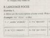 Language Focus – Unit 15 trang 112 SBT Anh lớp 11: Practise reading the following sentences.