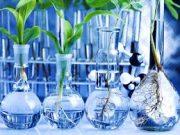 Chia sẻ đề kiểm tra Hóa học 11 15 phút Chương I: Tính nồng độ mol của dung dịch axit H2SO4?