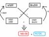 Bài 3. Axit, bazơ và muối: Giải bài 5, 6, 7 trang 16 SGK Hóa học 11 Nâng cao