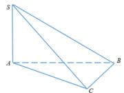 Đề kiểm tra 1 tiết Hình học 12 Chương 1 – Khối đa diện: Một hình lăng trụ có 28 đỉnh sẽ có bao nhiêu cạnh?
