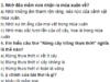 Tiết 7 – Tuần 10 trang 70, 71 Vở bài tập (SBT) Tiếng Việt lớp 5 tập 1: Trong bài thơ, mầm non được nhân hoá bằng cách dùng những động từ chỉ hoạt động của ngưòi để kể, tả về mầm non?