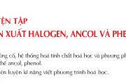 Bài 42. Luyện tập: Dẫn xuất halogen, ancol và phenol: Giải bài 1, 2, 3, 4, 5, 6, 7 trang 195 SGK Hóa học 11