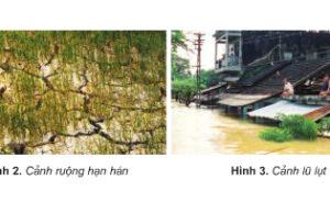 Bài 3. Khí hậu – Giải bài tập trang 74 SGK Địa 5: Đặc điểm khí hậu nhiệt đới gió mùa nước ta?