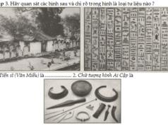 Bài 1. Sơ lược về môn Lịch sử – SBT Lịch sử lớp 6: Tư liệu hiện vật là gì?