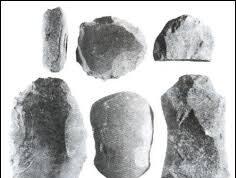 Bài 8. Thời nguyên thủy trên đất nước ta – SBT Sử lớp 6: Công cụ chủ yếu của Người tối cổ là gì?