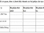 Chính tả – Tuần 32 trang 87 VBT Tiếng Việt lớp 5 tập 2: Viết lại cho đúng tên các cơ quan, đơn vị sau