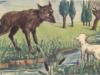 Soạn bài Chó sói và cừu trong thơ ngụ ngôn của La Phông-ten Văn 9 trang 37 ngắn: Xác định bố cục hai phần của bài nghị luận văn chương này