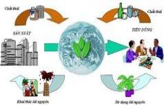 Bài 1, 2, 3, 4, 5 trang 111 SBT Sinh 9: Những hậu quả nghiêm trọng mà con người tác động vào môi trường tự nhiên trong xã hội công nghiệp là gì