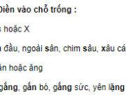 Chính tả – Tuần 2 trang 6 Vở BT Tiếng Việt 2 tập 1: Điền vào chỗ trống s hoặc x: xoa đầu, ngoài sân; chim sâu