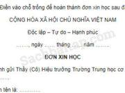 Tập làm văn – Ôn tập về viết đơn trang 121 Vở bài tập Tiếng Việt 5 tập 1: Em hãy viết đơn gửi Ban Giám hiệu xin được học môn tự chọn (về ngoại ngữ, tin học,…) hoặc đơn theo gợi ý của thầy cô