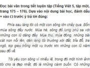Tiết 7 – Ôn tập cuối học kì 1 trang 132 Vở bài tập Tiếng Việt 5 tập 1: Vì sao tác giả nói những cánh buồm chung thủy cùng con người
