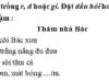 Chính tả – Tuần 31 trang 56 Vở bài tập Tiếng Việt 2 tập 2: Điền tiếng thích hợp vào chỗ trống rời hoặc dời