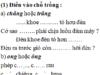 Chính tả – Tuần 34 trang 66 Vở bài tập Tiếng Việt 2 tập 2: Đặt dấu hỏi hoặc dấu ngã trên những in đậm
