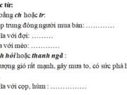 Chính tả – Tuần 34 trang 68 VBT Tiếng Việt 2 tập 2: Có thanh hỏi hoặc thanh ngã, chỉ các đồ dùng: tủ, đũa, muỗng, giỏ, mũ, đĩa, nĩa, sổ, chảo, chổi, vải, quyển vở