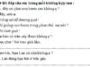 Tập làm văn – Tuần 23 trang 21 VBT Tiếng Việt lớp 2 tập 2: Chép lại 2 – 3 điều trong nội quy của trường em: Các em phải vâng lời thầy, cô giáo và cha mẹ