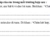 Tiết 5 – Tuần 35 trang 73 VBT Tiếng Việt 2 tập 2: Đặt câu hỏi có cụm từ vì sao cho các câu dưới đây: Vì khôn ngoan, Sư Tử điều binh khiển tướng rất tài