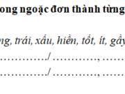 Tiết 8 – Tuần 35 trang 77 VBT Tiếng Việt 2 tập 2: Viết từ 3 đến 5 câu nói về bé của em (hoặc em bé của nhà hàng xóm)