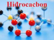 Đề kiểm tra 1 tiết (45 phút) Đề số 1 Chương V Hóa học 11 – Hidrocacbon no: Ở điều kiện tiêu chuẩn, 2 lít hiđrocacbon khí (Z) có khối lượng bằng 1 lít oxi. Công thức phân tử của (Z) là gì ?