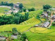 Đề thi giữa kì 1 môn Địa lớp 7 – THCS Trần Phú 2018: Để sản xuất ra khối lượng nông sản lớn, có giá trị cao, nền nông nghiệp tiên tiến ở đới ôn hòa đã áp dụng những biện pháp gì?