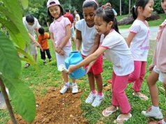Bài 7. Yêu thiên nhiên, sống hòa hợp với thiên nhiên – SBT GDCD lớp 6: Thế nào là yêu thiên nhiên, sống hoà hợp với thiên nhiên ? Nêu ví dụ