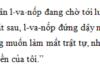 Luyện từ và câu – Nối các vế câu ghép bằng quan hệ từ trang 11, 12 VBT Tiếng Việt lớp 5 tập 2: Dùng dấu gạch xiên ( / ) ngăn cách các vế câu trong từng câu ghép vừa tìm được
