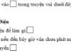 Luyện từ và câu – Tuần 22 Trang 18 Vở bài tập Tiếng Việt 3 tập 2: Bạn Hoa điền toàn dấu chấm vào □ trong truyện vui dưới đây. Hãy sửa lại những chỗ dùng dấu chấm sai