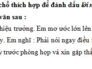 Luyện từ và câu – Ôn tập về dấu câu (Dấu ngoặc kép) trang 95, 96 Vở BT Tiếng Việt 5 tập 2: Viết một đoạn văn khoảng 5 câu thuật lại một phần cuộc họp của tổ em, trong đó có dùng dấu ngoặc kép để dẫn lời nói trực tiếp hoặc đánh dấu những từ ngữ có ý nghĩa đặc biệt