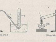 Bài 44.5, 44.6, 44.7 trang 61 Sách BT Hóa lớp 8: Xác định nồng độ mol của dung dịch C