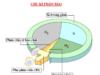 Kiểm tra 1 tiết Phần 2 Chương IV – Phân bào Sinh lớp 10: Chu kì tế bào bao gồm các pha theo trình tự