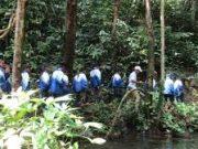 Kiểm tra 15 phút môn Sinh học lớp 12 Chương II Phần sinh thái học: Quần xã rừng thường có cấu trúc nổi bật là gì?
