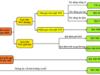 Bài 1, 2, 3 trang 26 SBT Sinh 12: Hãy xác định số kiểu gen có thể có ở F2 ?