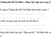 Tập làm văn – Ôn tập về tả cảnh trang 83 VBT Tiếng Việt lớp 5 tập 2: Bài văn miêu tả buổi sáng ở Thành phố Hồ Chí Minh theo trình tự nào