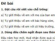 Tiết 2 – Tuần 18 trang 78 Vở BT Tiếng Việt 2 tập 1: Đặt câu rồi viết vào chỗ trống: Tự giới thiệu về em với mẹ của bạn em, khi em đến nhà bạn lần đầu