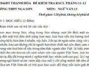 Đề kiểm tra KSCL đầu năm môn Văn lớp 12 – THPT Nga Sơn: Nêu ít nhất hai câu trong đoạn trích thể hiện giá trị, ý nghĩa của hoa sen?