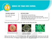 Bài 22 Hình có tâm đối xứng trang 103 SGK Toán lớp 6 tập 1 KNTT