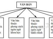 Soạn văn bài Ôn tập phần tiếng Việt ngắn gọn nhất Văn 10: Hoạt động giao tiếp là gì?