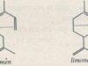 Bài 42. Khái niệm về tecpen: Giải bài 1, 2, 3 trang 173 Hóa học 11 Nâng cao