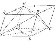 Bài 3.22, 3.23, 3.24 trang 152 Sách BT Hình học 11: Chứng minh rằng mặt phẳng (ABD) vuông góc với mặt phẳng (BCD) ?