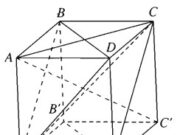Bài 3.26, 3.27, 3.28, 3.29 trang 153 SBT Hình học 11: Chứng minh mỗi cạnh bên của hình chóp đó vuông góc với cạnh đối diện ?