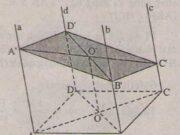 Bài 1, 2, 3, 4 trang 71 SGK Hình học 11: Hai mặt phẳng song song