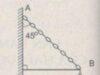 Bài 17.4, 17.5, 17.6 trang 42 SBT Lý 10: Hãy xác định lực căng T của dây ?