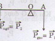 Bài 1, 2, 3, 4, 5 trang 106 Sách Vật lý lớp 10: Quy tắc hợp lực song song cùng chiều