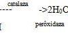 Bài 13, 14, 15, 16 trang 96, 97 SBT Sinh 10: Dựa vào nhu cầu ôxi, người ta có thể chia vi sinh vật ra làm mấy nhóm ?