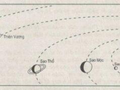 Bài 1. Vị trí, hình dạng và kích thước của Trái Đất – SBT Địa lớp 6: Vĩ tuyến nào chia quả Địa Cầu thành bán cầu Bắc và bán cầu Nam ?